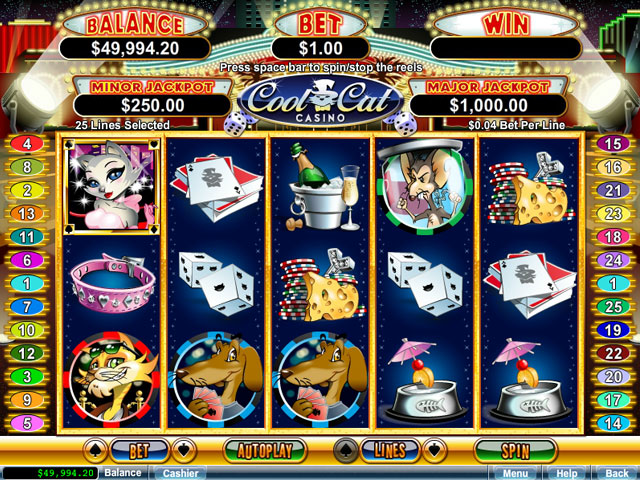 Coolcat casino review gambling online roulette yourbestonlinecasino com